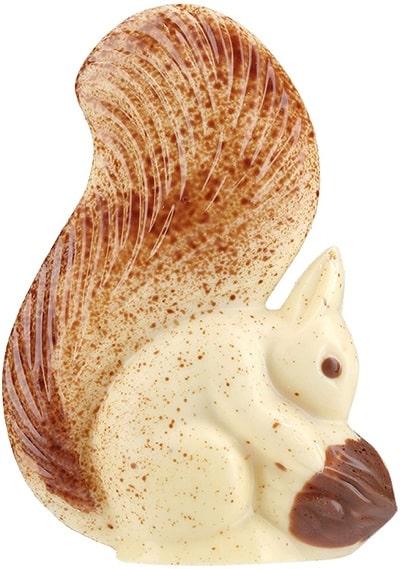 Chevaliers d Argouges ecureuil chocolat blanc