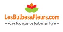 Les Bulbes A Fleurs