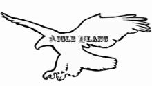 Aigle Blanc